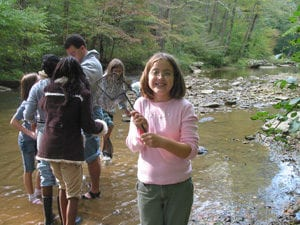 Exploring Creek with Nets