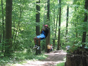 Ziplining in Lancaster County, PA Through Woods