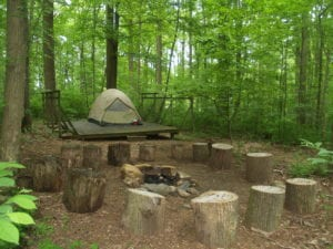 Platform tent site with fire pit